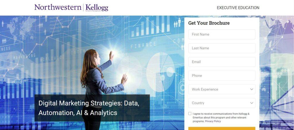 digital marketing strategies course from kellogg
